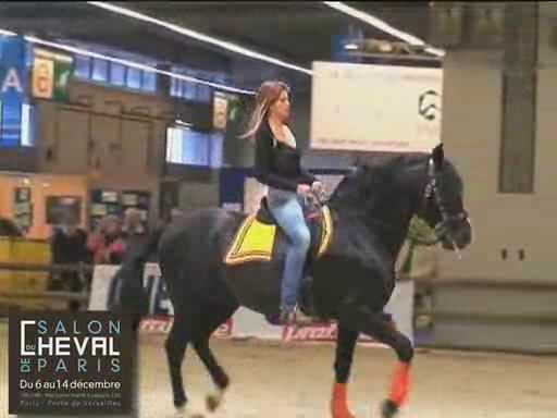 Best of salon du cheval.ogg